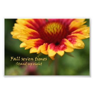 Inspirational quote colourful flower photograph