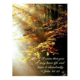 Inspirational Scripture John 10 10 Fall Leaves Postcard