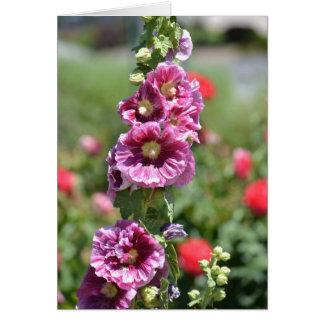 Inspired Hollyhock Flowers Card