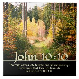 Inspiring Bible Verse John 10 10 Autumn Path Tile