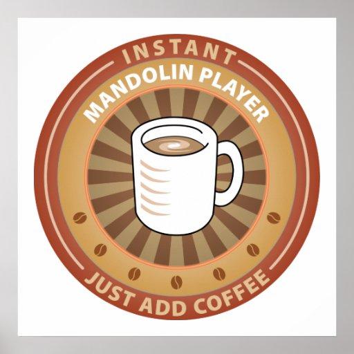 Instant Mandolin Player Poster