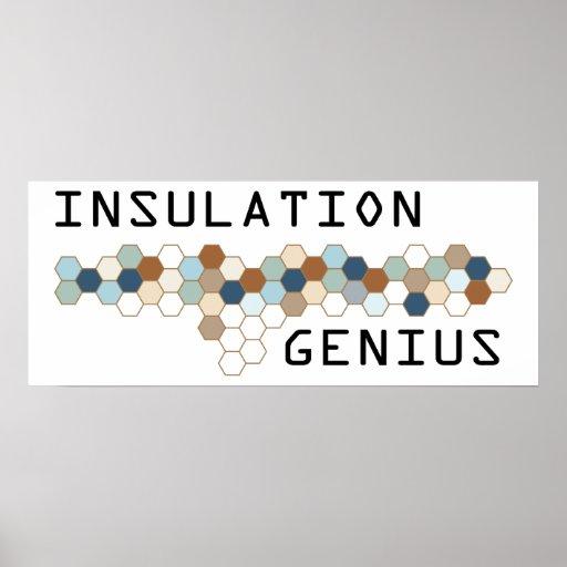 Insulation Genius Print
