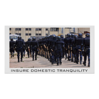 Insure Domestic Tranquility Posters