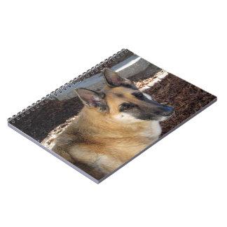 Intelligent German Shepherd Notebook