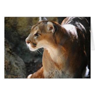 Intense Cougar Card