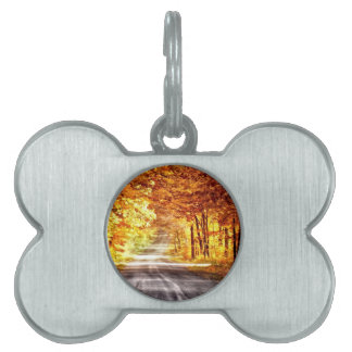 Interchange of Light and Colour Pet Name Tag