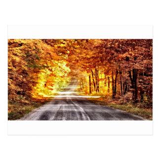 Interchange of Light and Colour Postcard