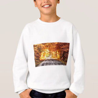 Interchange of Light and Colour Sweatshirt