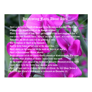 Interesting facts about April Postcard