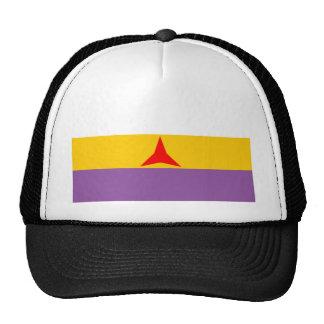 international Flag Trucker Hat