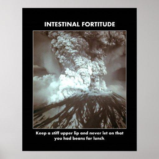 intestinal-fortitude-keep-a-stiff-upper-lip print