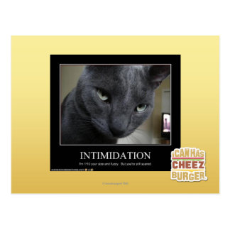 Intimidation Postcard