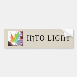 Into Light Bumper Sticker