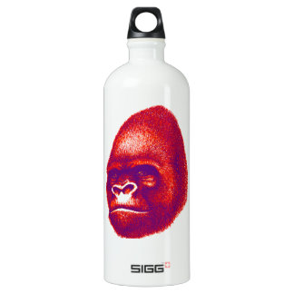 Into the Congo Water Bottle