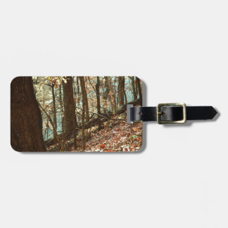 Into the Woods Luggage Tag