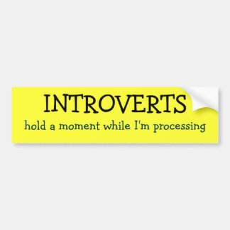 INTROVERTS, hold a moment while I'm processing Bumper Sticker