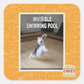Swimming Pool Stickers Swimming Pool Custom Sticker Designs