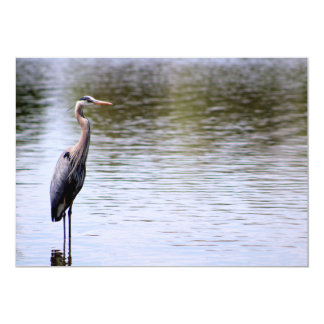 Invitation Card - Great Blue Heron