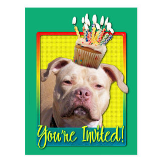 Invitation Cupcake - Pitbull - Jersey Girl Postcard