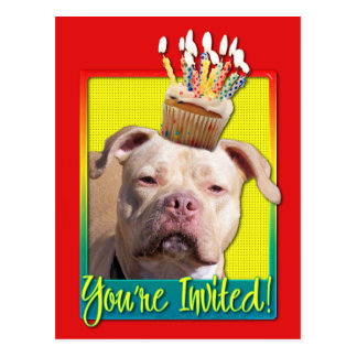 Invitation Cupcake - Pitbull - Jersey Girl Postcard