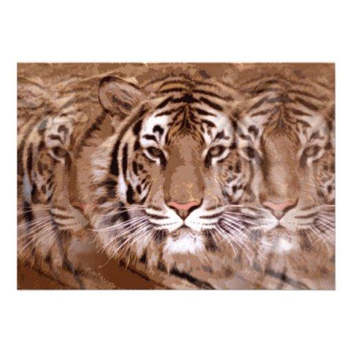 Invitation de tigre