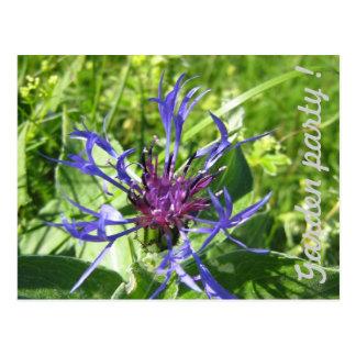 Invitation Garden party Fleur Cartes Postales