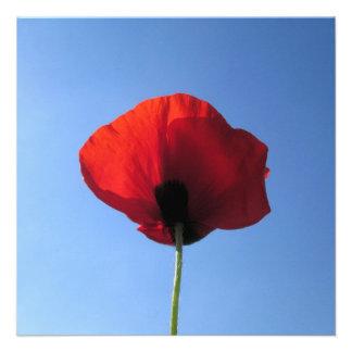 Invitation - Red Poppy Blue Sky