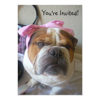 Invitations English Bulldog Birthday or any occas