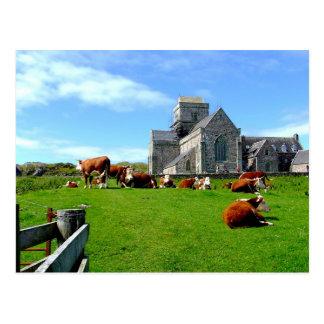 Iona Abbey Postcard