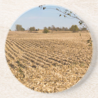 Iowa Cornfield Panorama Photo Drink Coaster