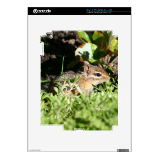 iPad 2 skin with photo of cute chipmunk
