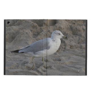 iPad Air PHOTOGRAPH OF MR. SEAGULL iPad Air Case