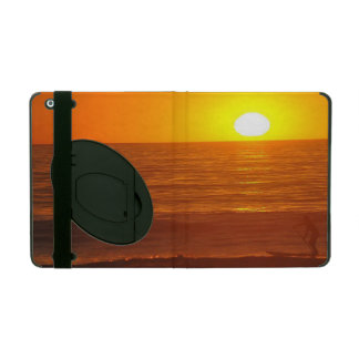iPad and iPod Cases
