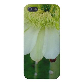 Ipad Az Night-blooming Cereus iPhone 5 Cover