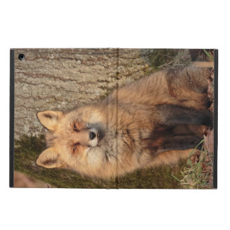 iPad Case: Sitting Fox iPad Air Cover