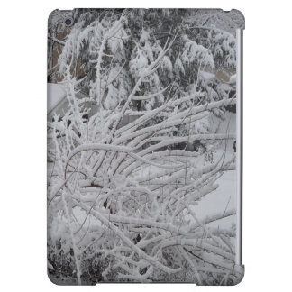 ipad case winter photograph