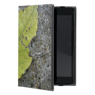 iPad Mini Old Leaf case iPad Mini Cover