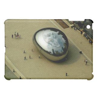 ipad pic of chicago bean and skull iPad mini case