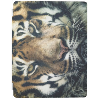 iPad Smart Cover 10.5 WITH TIGER iPad Cover