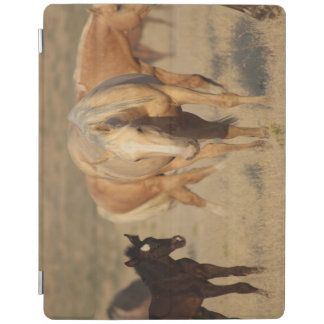 iPad Smart Cover HAPPY BABY ANIMALS MARE AND FOAL iPad Cover