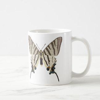 Iphiclides padalirius classic white coffee mug