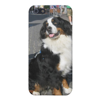iPhone5 Case: Berner, Fussen Bavaria iPhone 5/5S Cases