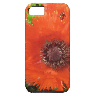 iPhone5 red poppy case
