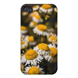 iPhone 4/4s Speck Case - Small Yellow Daisies Cases For iPhone 4