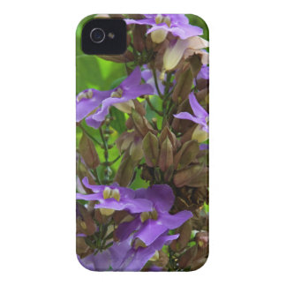 iPhone 4 Case - Blue Ginger
