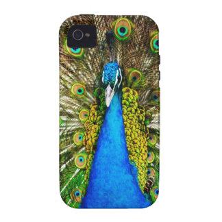 Iphone 4 peacock case Case-Mate iPhone 4 cases