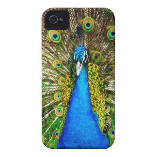 Iphone 4 peacock case iPhone 4 case