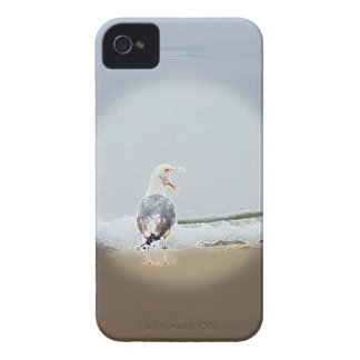 iPhone 4 Screaming Gull Case