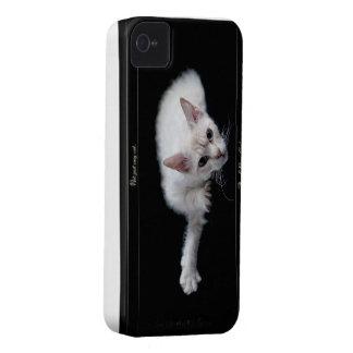 Iphone 4s Case - LaPerm cat