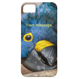 iphone 5 case featuring cute Hyacinth Macaw parrot